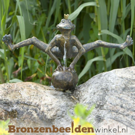 Koningskikker beeld Dirk BBWR88767