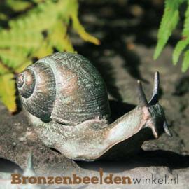 Beeld slak in brons BBW37031