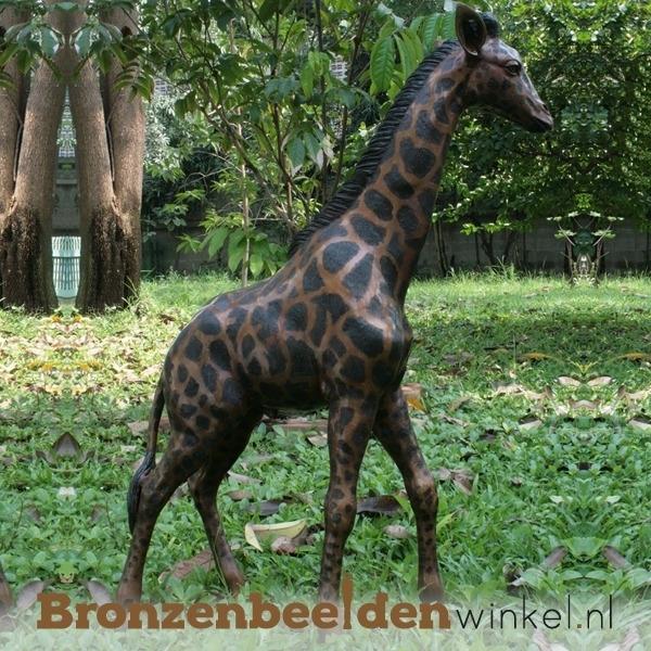 Bronzen giraffe tuinbeeld BBWB860