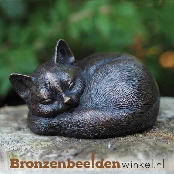 Herinnering slapende kat BBW1228
