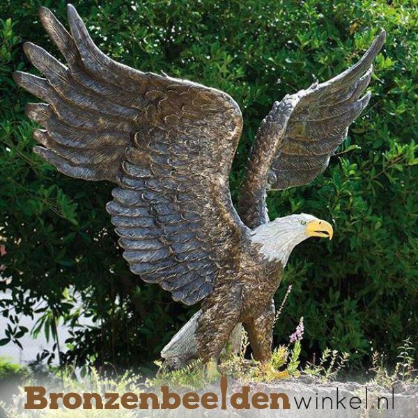 NR 1 | Realistisch dierenbeeld adelaar BBWR88632