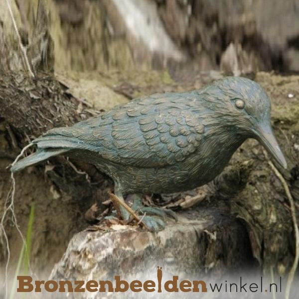 Beeld notenkraker vogel in brons BBWR88260