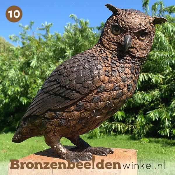 NR 10   75 jaar verjaardagscadeau ''Bronzen uil'' BBW2213