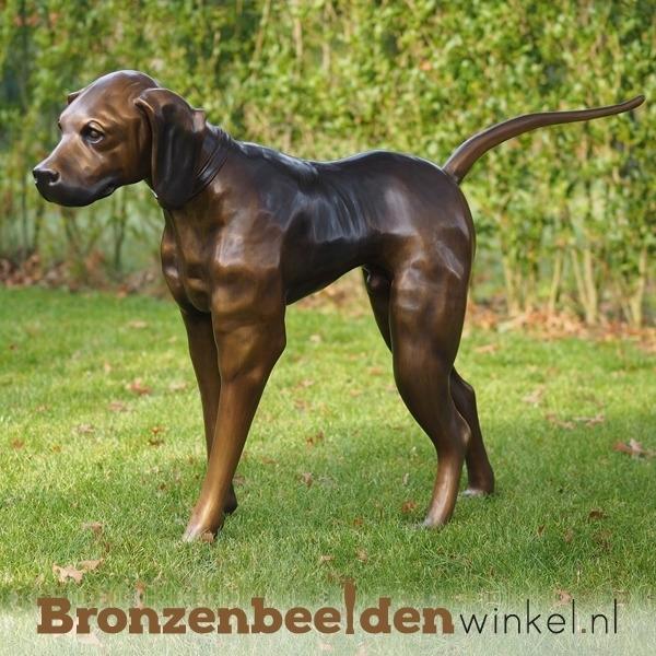 Bronzen beeld bloedhond BBW635