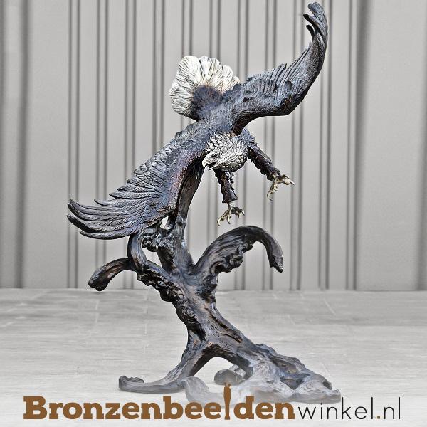 Witkop adelaar beeld in brons BBW81066br