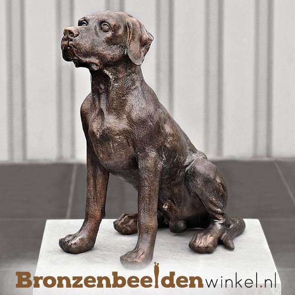 Bronzen labrador beeld BBW37228