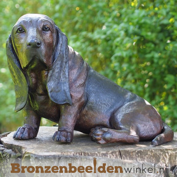 Basset hond beeld BBW94644