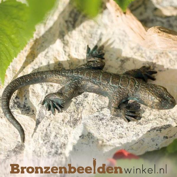 Bronzen hagedis beeld BBWR88105