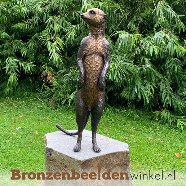 Bronzen stokstaartje BBW1332BR