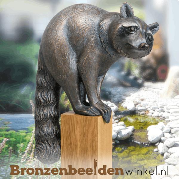 Bronzen wasbeer beeld BBW37260
