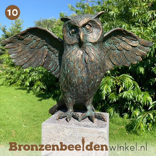 NR 10   Cadeau voor ouders ''Uil met gespreide vleugels'' BBWR88879