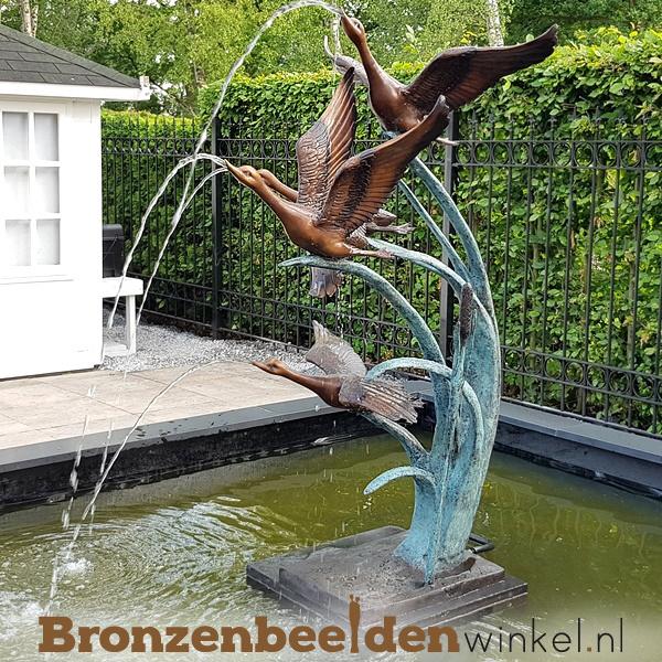 Fontein beeld 4 bronzen eenden BBW52465