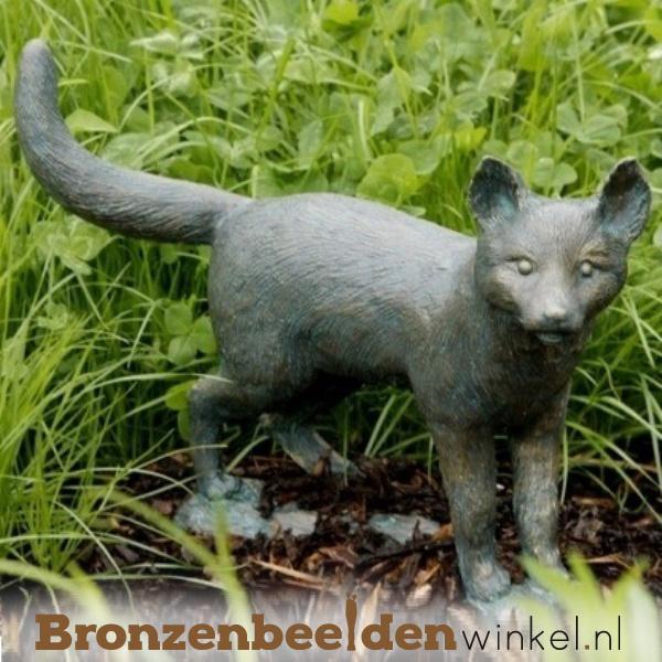 Beeld jonge vos (welp) BBWR88456