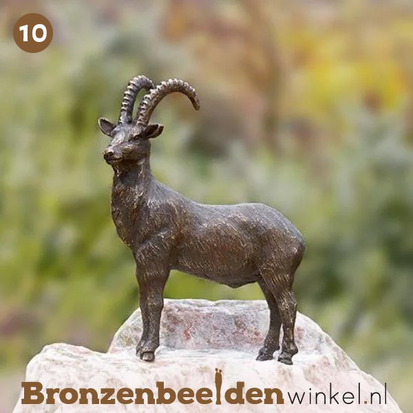 NR 10 | Cadeau man 90 jaar ''Bronzen steenbok'' BBWR88579
