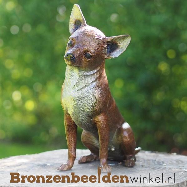 Beeld Chihuahua hond in brons BBW37223