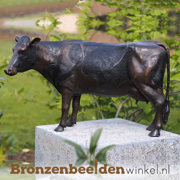 Bronzen koe beeld BBW91154br