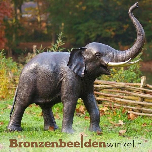 NR 3 | Realistisch dierenbeeld olifant BBW944