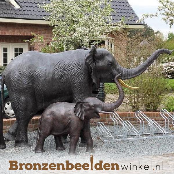 Grote olifanten paar  BBW944