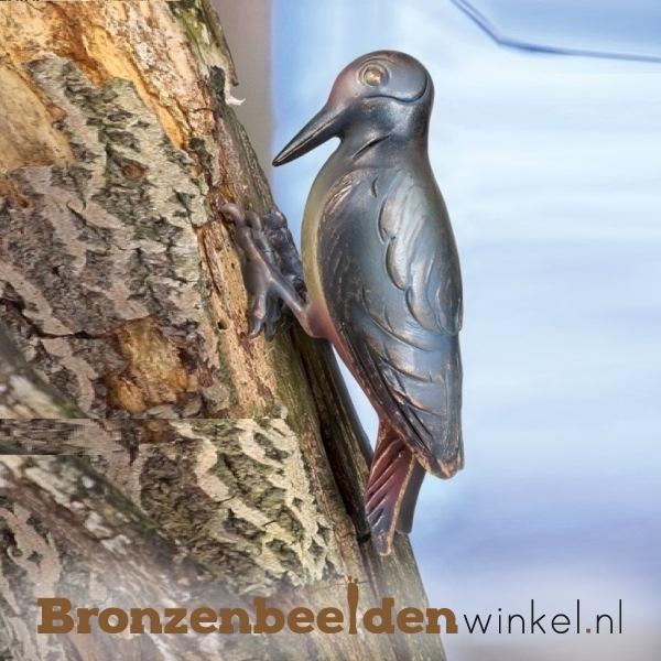 Bronzen specht beeld BBW37252