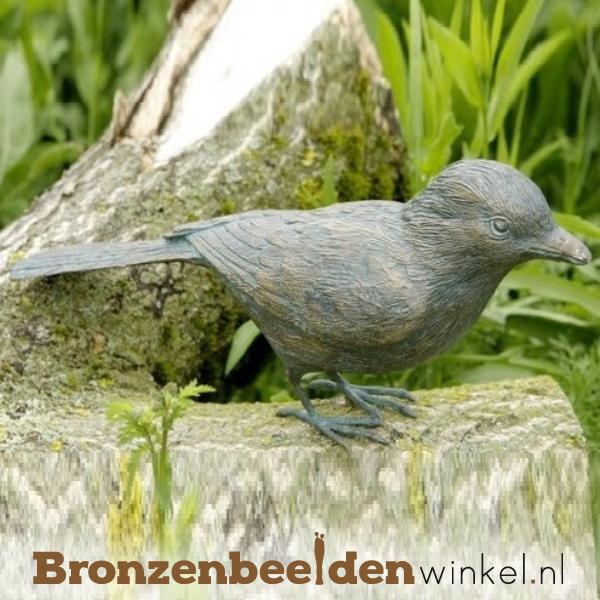 Beeld gaai vogel in brons BBWR88474