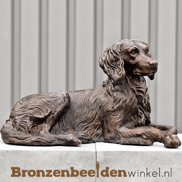 Beeld Drentse Patrijs hond BBW37244