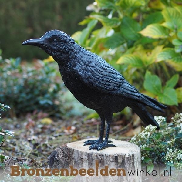 Bronzen raaf beeld BBW50325