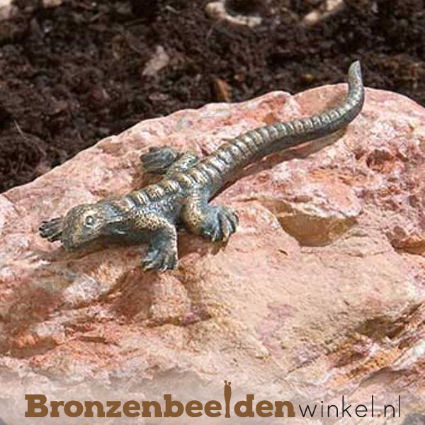 Beeld hagedis brons BBWR90321