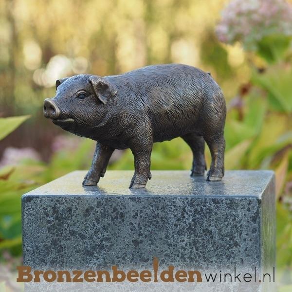 Bronzen beeld varken BBW1170