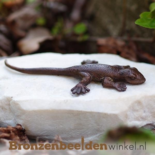 Bronzen salamander beeldje BBWAN1059br