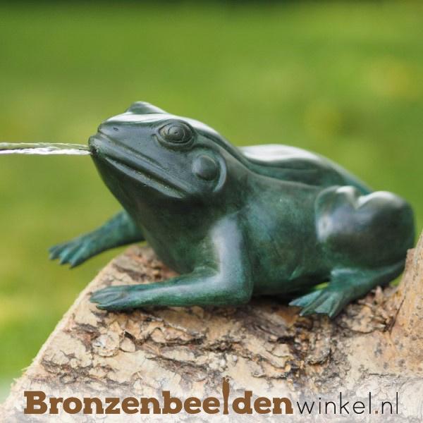 Kikker waterspuiter BBW0243BR