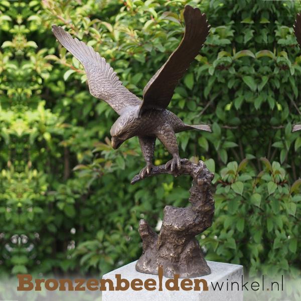 Bronzen adelaar beeld BBW0389br