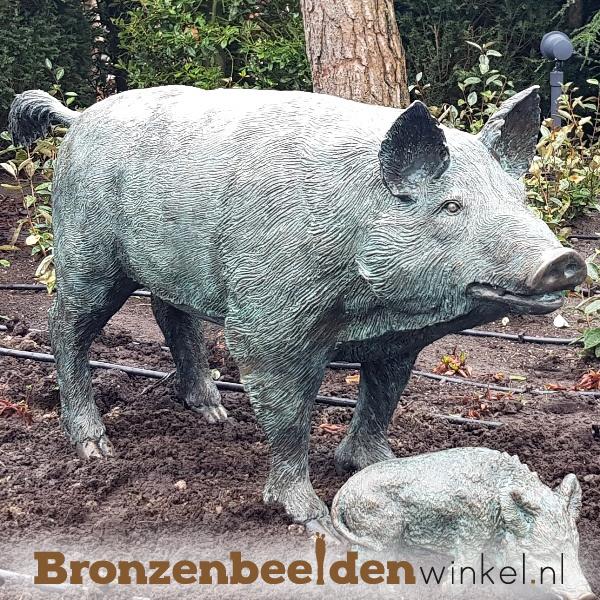 Tuinbeeld varken in brons BBWR88457