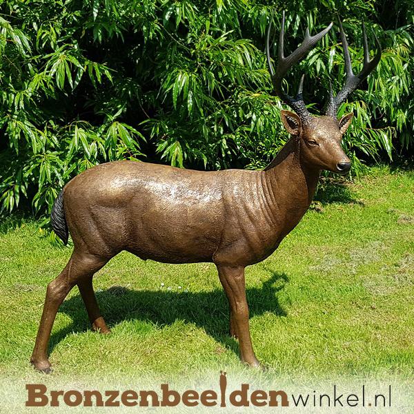 Bronzen beeld hert mannelijk BBW971