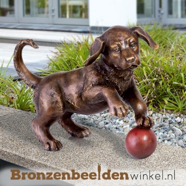 Aandenken spelende hond BBW37218