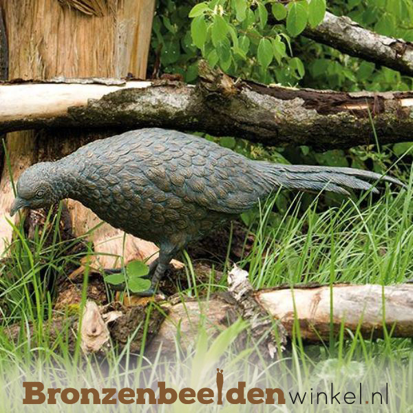 Bronzen fazant beeld BBWR88281