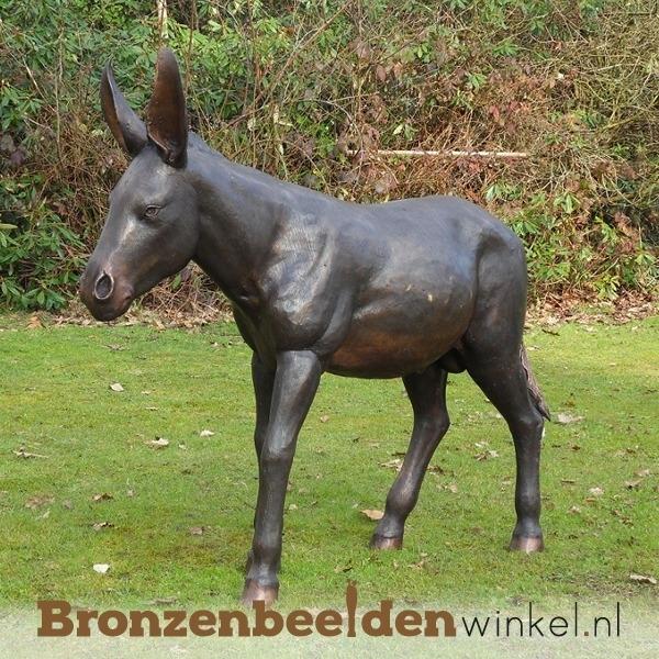 Bronzen ezel beeld BBW94312
