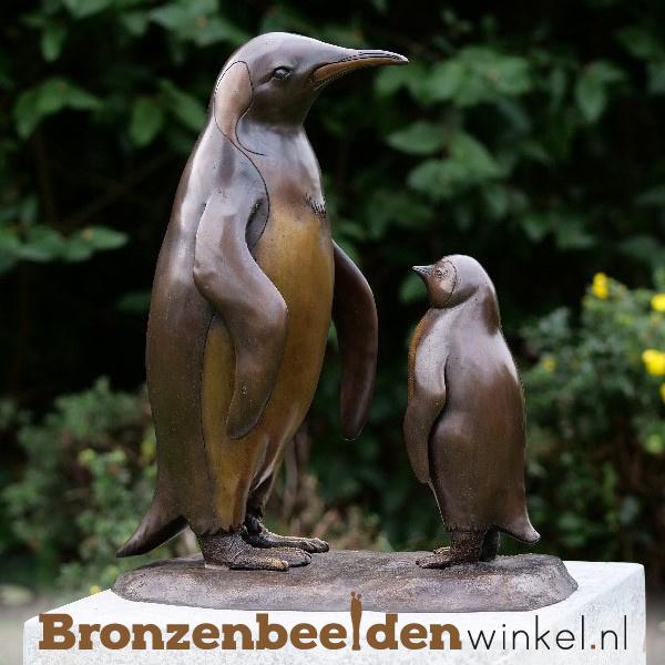 Beeld pinguïns BBW1293