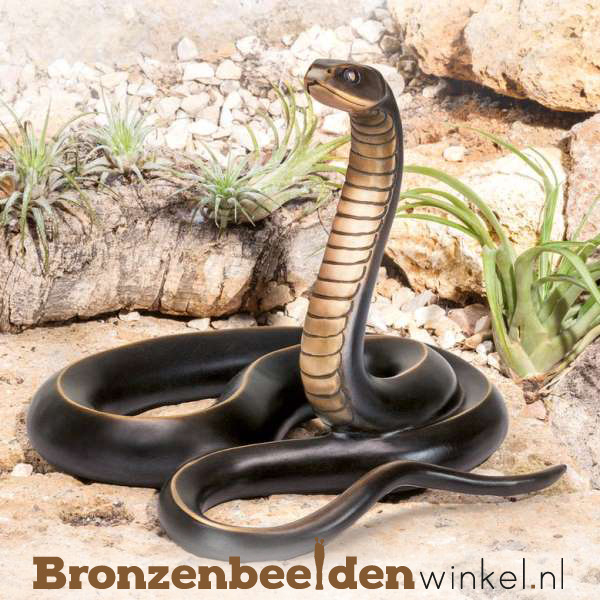 Bronzen ratelslang beeld BBW84282