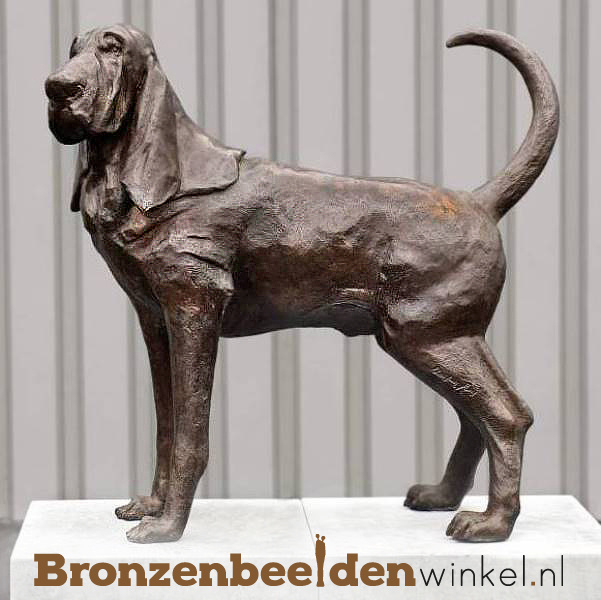 Beeld bloedhond in brons BBW37232