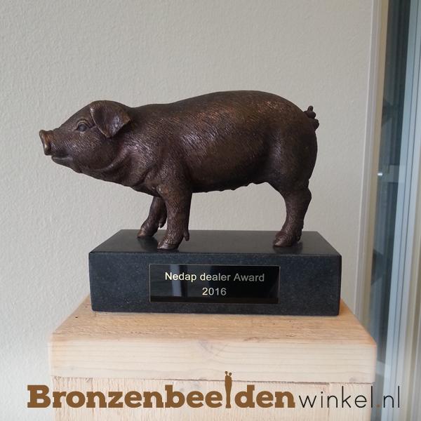 award van brons, bronzen award