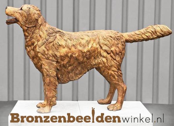 beeld hond, standbeeld hond