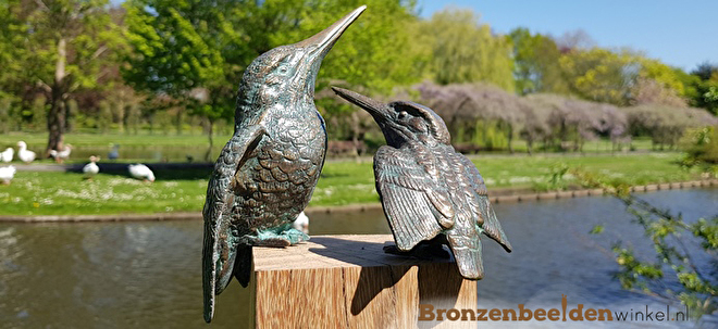 bronzen ijsvogel