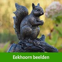 eekhoorn beelden