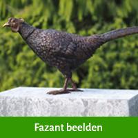 fazant beelden