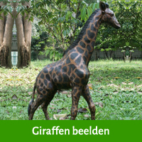 beeld giraffe