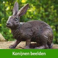 konijnen beelden