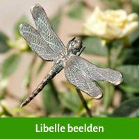 libelle beelden