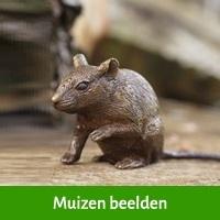 muizen beelden