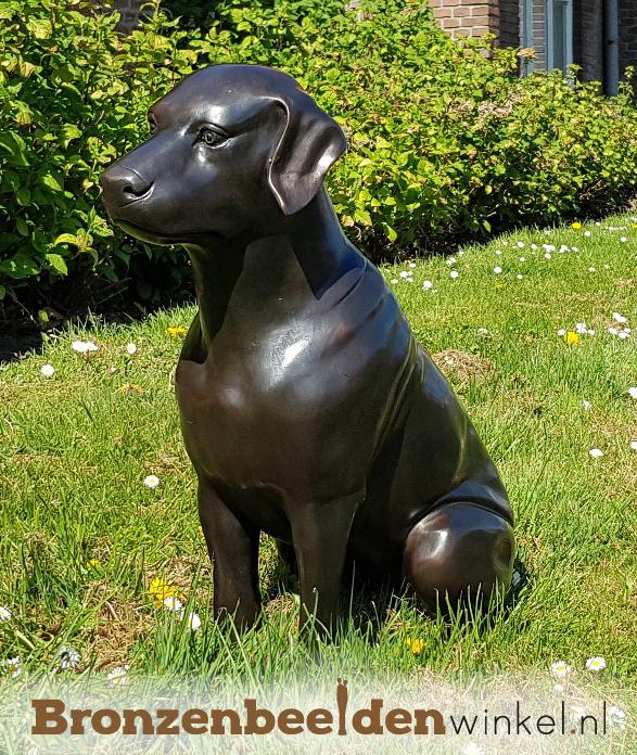tuinbeeld hond