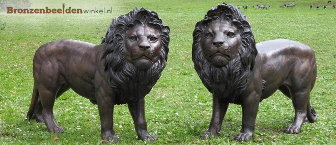 tuinbeeld leeuwen